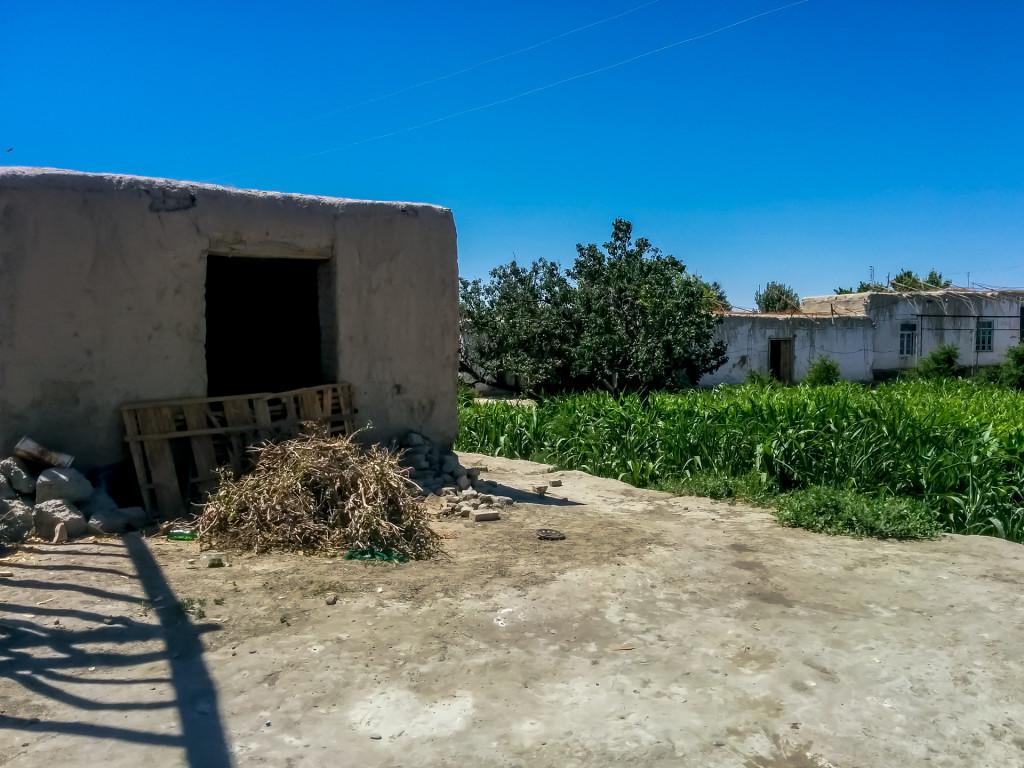 Деревня в Узбекистане